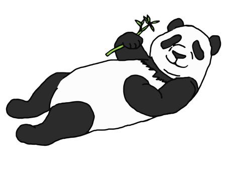 Pandas lying down