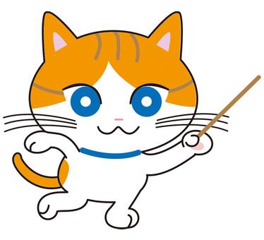 與指針的虎斑貓