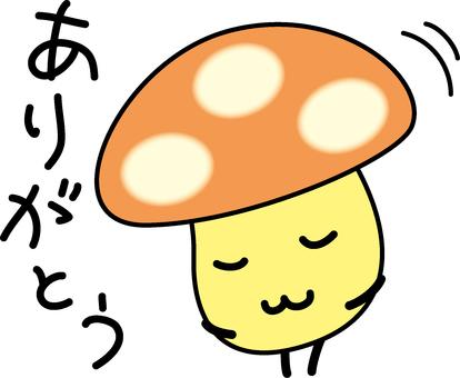 Mushroom to say thanks