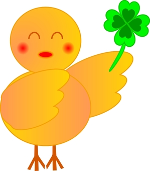 Chick with clover