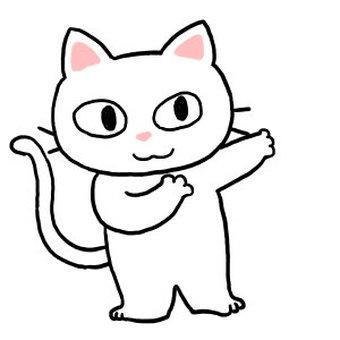 White cat 300 x 300