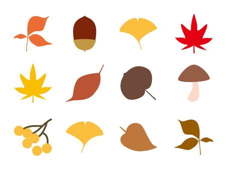 秋冬の葉、木の実セット