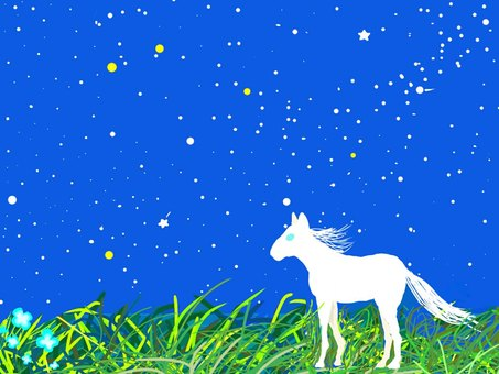 Night sky and horse ☆