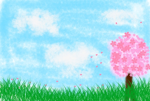 Sky and cherry blossoms and steppe