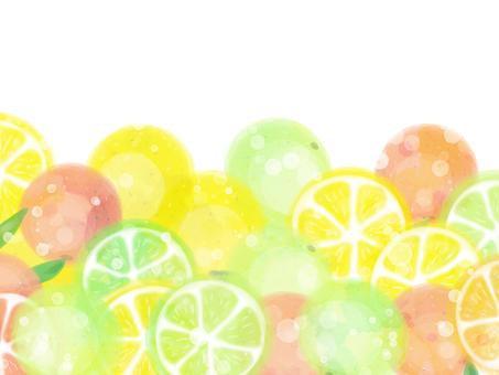 Citrus Frame / Horizontal Bottom