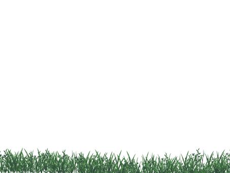 Grass 罫 line
