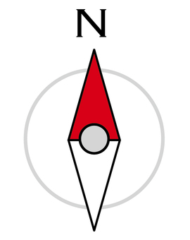 Direction needle