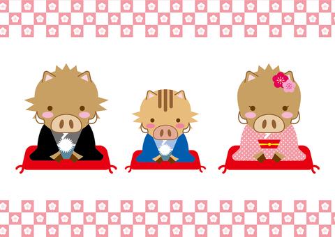 Wildlife Parents Hinagi New Year Boar