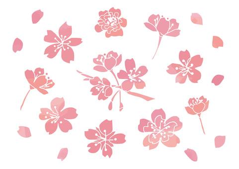 Sakura watercolor style
