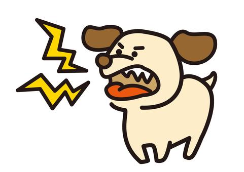 A dog barks