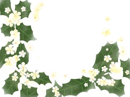 Hiiragi's flower