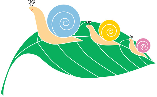 Parent and child of snail 3