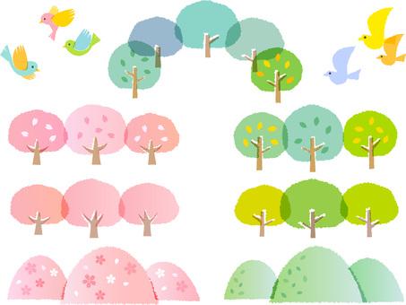 200203. Sakura, fresh green set