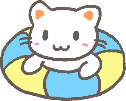 A floating wheel cat