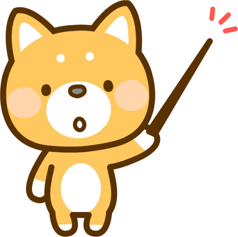 柴犬用一根棍子
