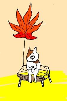 Come autumn.