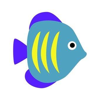 푸른 물고기 5