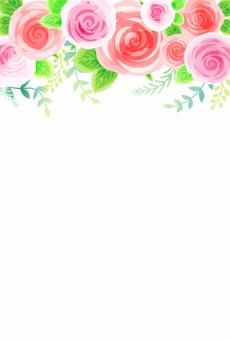 玫瑰背景005