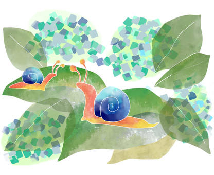 Hydrangea and a snail