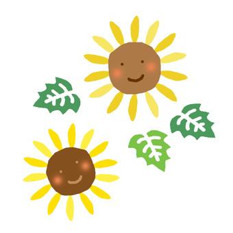 Sunflower parent and child