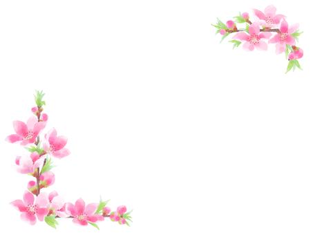 복숭아 꽃 9