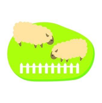 牧場羊01