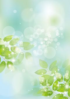 Glittering leaves & sky 41