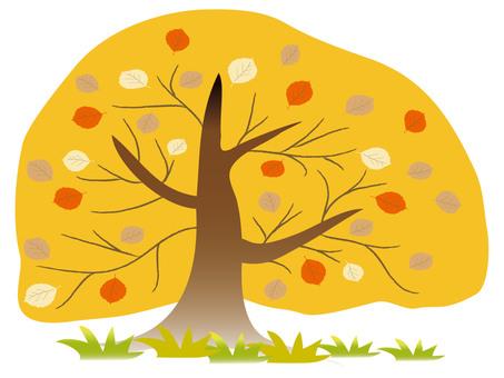 早期的秋天樹