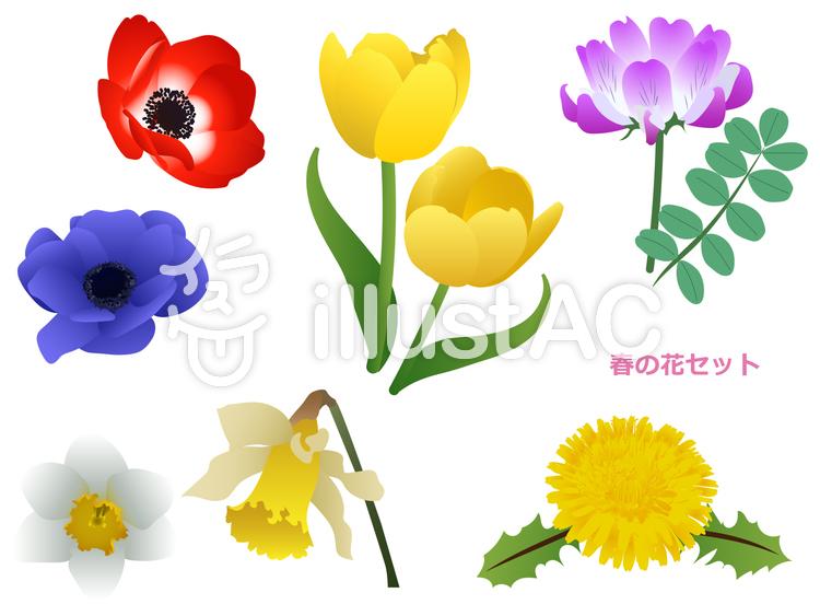 【フリーイラスト素材】春の花セット