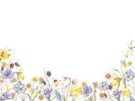Flower frame 264 - Flower frame frame of winter flowers