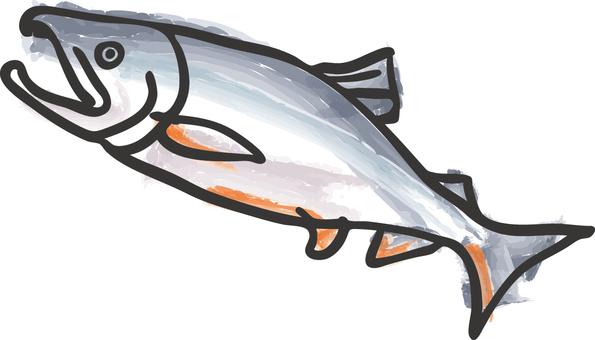 Food _ Salmon
