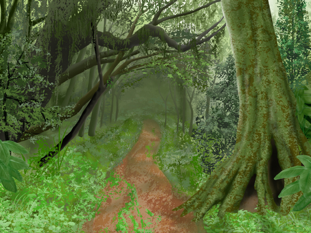 Nature - Forest