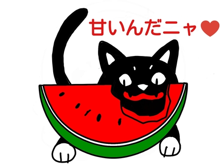 Black Cat 1 (Watermelon)