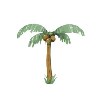 Palm tree 00