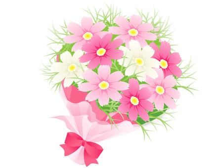Cosmos bouquets