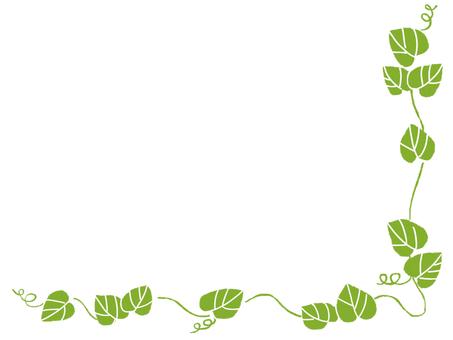 葉框(綠色)