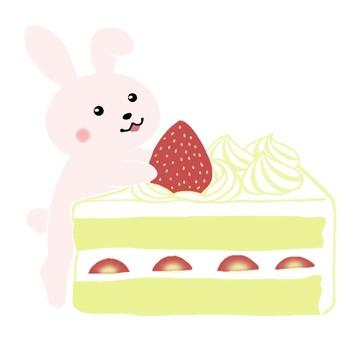 mini usa and strawberry shortcake