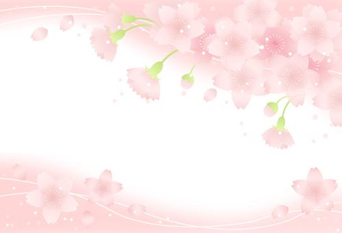 Sakura Frame 15