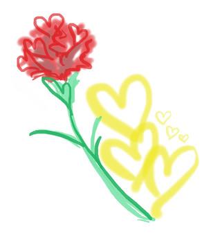 Heart's Carnation