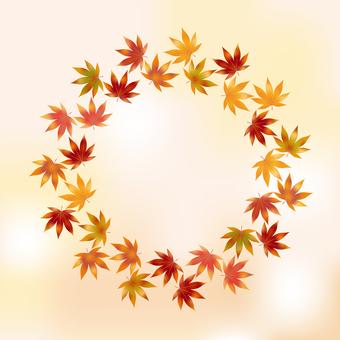 Autumn leaves 107
