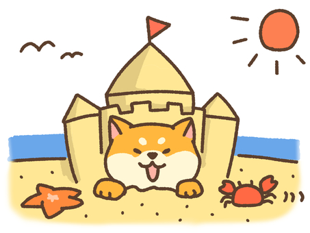 모래 장난 시바
