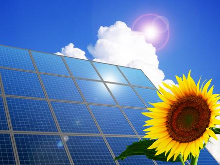 태양 광 발전과 해바라기의 이미지
