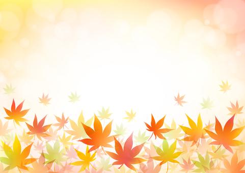 Autumn 186