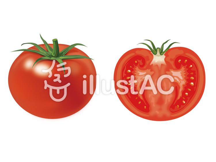 トマトイラストのイラスト
