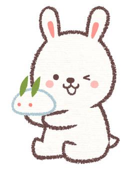 Rabbit and snow rabbit