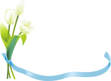 White tulips and ribbons (sideways)