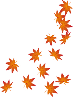 Falling leaves of leaves