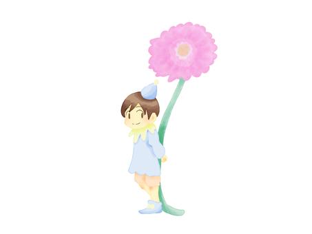 Daisy and dwarfs flower language, innocence