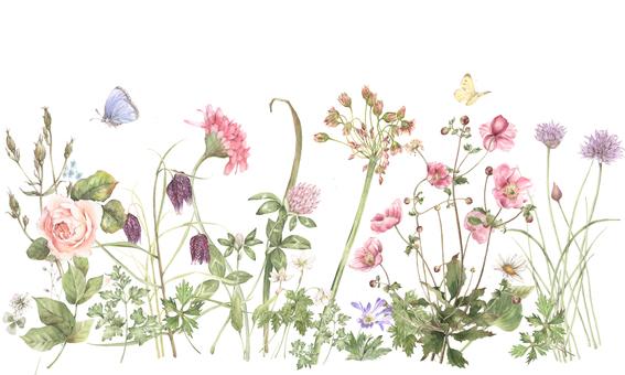 Background 6 - Natural garden background, back