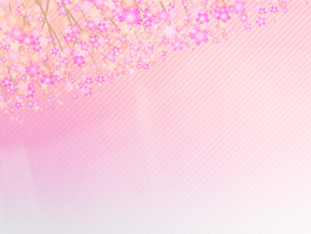 Cherry background 17